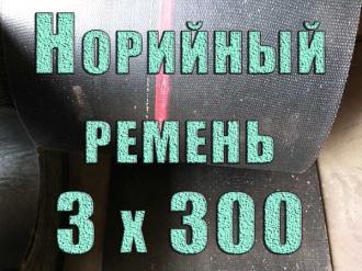 noriynyy-remen-3h300-foto